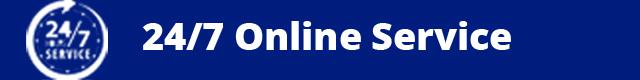 24/7 Online Support
